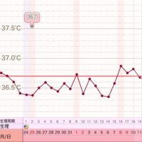 D29  高温期14日目