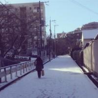 2017雪
