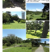 散策 「東京南東部-214」 浜離宮