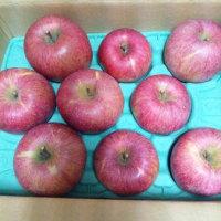 『大好き、りんご…』