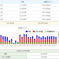 プラス1000歩運動 3(データ)