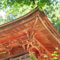 緑耀(かがよ)う山の寺