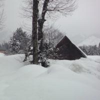 大雪のち大雨、、