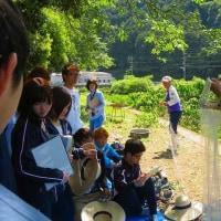 太田川漁協河川清掃&広島大学教養ゼミ体験授業