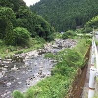 勝浦川上流のあゆつり