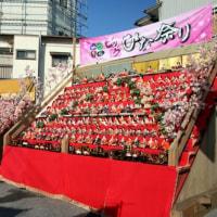 かつうらビックひな祭り 迫力ある飾りが満足(写真約30枚で)