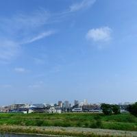 6月20日浅川散策・自然を愉しむ