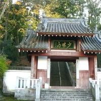 高崎・少林山ダルマ寺訪問 H-28-12- 2