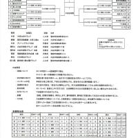 第53回全国社会人サッカー選手権愛知大会日程