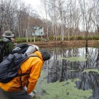4月19日(水)のっぽろの森自然観察の様子