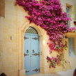マルタ留学 静寂の街イムディーナ