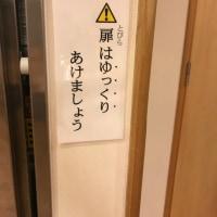 6/8 みなみがわ