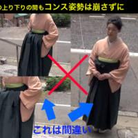 【卒業式】着物・袴姿のお嬢さん、どうしてこんな変なポーズしてるの?【バッグのコンス持ち】成人式