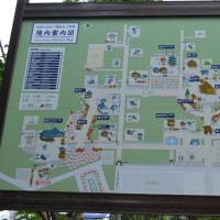 寺院滋賀0209  三井寺 境内図  西国第14番