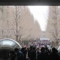 慶應義塾大学 卒業式 2017.03.23