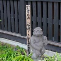大和市の花のお寺へ