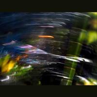 虹糸の流れ