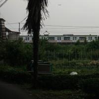 6月22日(木)  コアジサシ ダイビング   ・・夕景