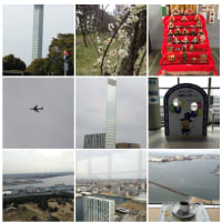2013-03-01千葉ポートタワー