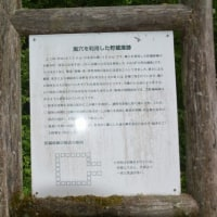 湯野上温泉の星乃井さんです