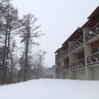 雪が降り続いています。