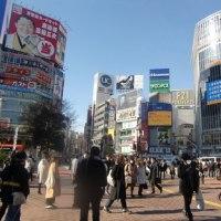 渋谷で映画とVR 前半。