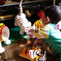 虎と10ヶ月の真力