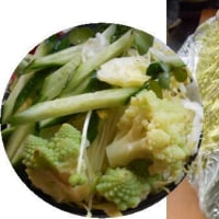 珍しい野菜いただきました!