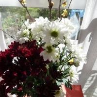 お得な花と銘酒との出会い