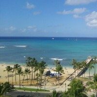 ハワイ旅行2日目  ハワイでも掘ってます