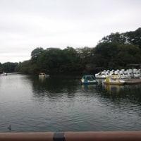 井の頭公園~新潟へ