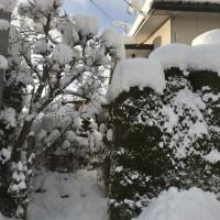 雪の中、長靴が大活躍