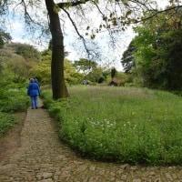 #000 -'16.    ヒドコート マナー ガーデン(その二)