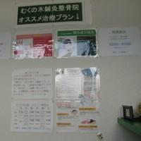 """午前、整体・鍼灸院、午後、日本画""""静物「蜜柑」"""""""
