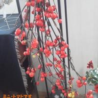 森・野山の花展~遊森庵~