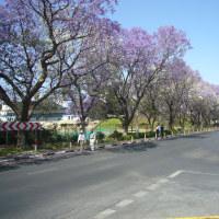 「東南アフリカ」編 ナミビア共和国 首都ヴィンドホック2