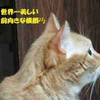 ダイちゃん日和♪完璧Eライン?!