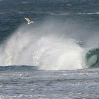 2月17日  菊田浦海岸の高浪