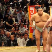 プラチナチケットで大相撲観戦