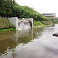 多賀城歴史博物館