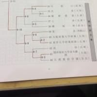 平成28年度 近畿高等学校柔道新人大会(団体試合)