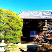 からすやま寺町の寺院「春陽山永隆寺」