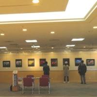 NTT-OBフォトサークル「写友会」作品展開催中