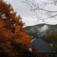 鞍馬山と紅葉シーズンの京都旅