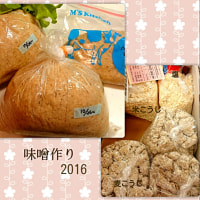 今年の味噌仕込み (袱紗味噌)