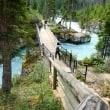 カナディアンロッキーの旅(その6):マーブル渓谷(クートネイ国立公園)、エメラルド湖(ヨーホー国立公園)