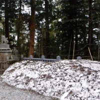 2日目の森林植物園   - 久しぶりの戸隠高原 -