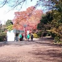 善福寺公園でした