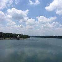 6月15日の多摩湖ランニング