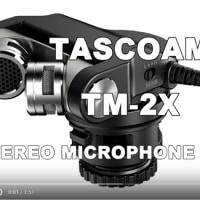 Windscreen test of TASCAM TM-2X. ウインドジャマーのテストをしてみました。